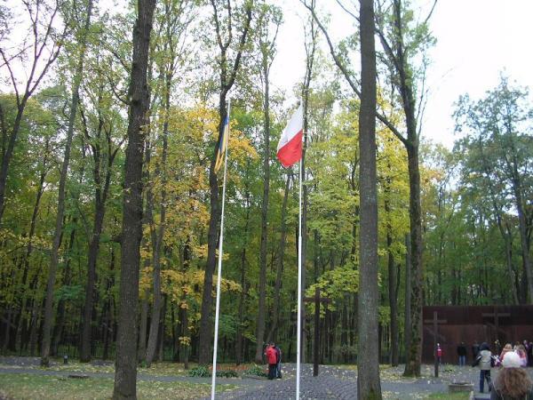 /Files/images/украинский и польский национальные флаги..JPG